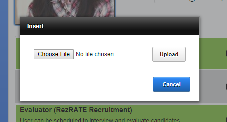 Screenshot of Insert file window.