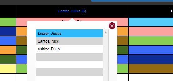 Screenshot of evaluator panel function